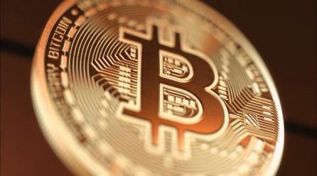 Bitcoin Dominates More Than 80% of the Cryptocurrency Market, Says New Research